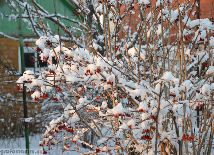 Снегопад в марте