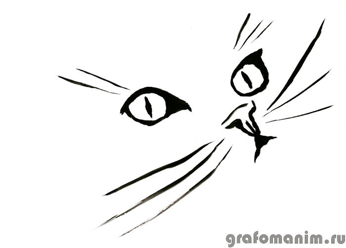 Как нарисовать чёрно белый рисунок поэтапно