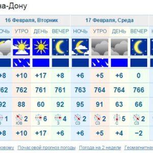 Весна в феврале, +17 градусов!
